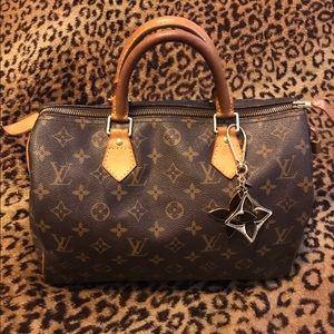 🤎 Classic Louis Vuitton Speedy 30 bag